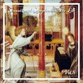 Sensational Symphonies For Life, Vol. 8 - Bach: Flute Concertos von Eckart Haupt
