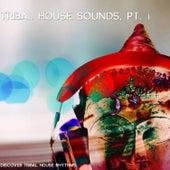 Tribal House Sound, Pt. 1 (Discover Tribal-House Rhythms) von Various Artists