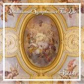 Sensational Symphonies For Life, Vol. 61 - Concertos Francais by Michael Faust