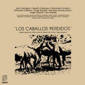 Los Caballos Perdidos by German Garcia