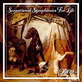 Sensational Symphonies For Life, Vol. 19 - Busoni-Klaviertranscriptionen de Holger Groschopp