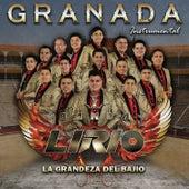 Granada (Instrumental) de Banda Lirio