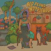 No Plans No Friends de Nicolaas