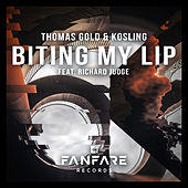 Biting My Lip by Thomas Gold