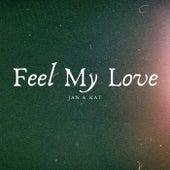 Feel My Love de Jan & Dean
