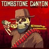 Tombstone Canyon von Wisecrvcker