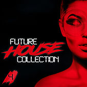 Future House Collection, Vol. 4 de Various Artists