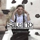 Sale No by Mohsen Ebrahimzadeh