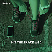 Hit The Track, Vol. 15 by Hot Q
