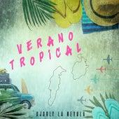 Verano Tropical de Dj Orly La Nevula