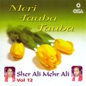 Meri Tauba Tauba, Vol. 12 by Sher Ali