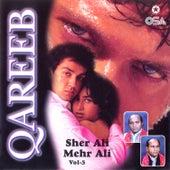 Qareeb, Vol. 5 by Sher Ali