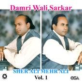 Damri Wali Sarkar, Vol. 1 by Sher Ali