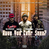 Have You Ever Seen by DJ Crook