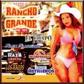 Desde El Rancho Grande Vol. 101 by Vários Artistas
