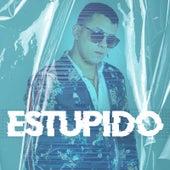 Estupido von Felix (Rock)