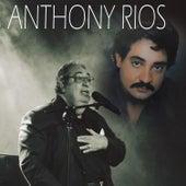 Amada Amante by Anthony Rios