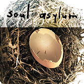 If I Told You (Acoustic) by Soul Asylum