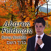 Baruj Hashem di Aharon Feldman