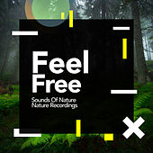 Feel Free von Sounds Of Nature