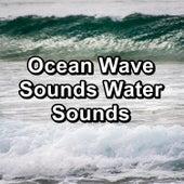 Ocean Wave Sounds Water Sounds de Meditation Awareness