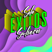 Solo éxitos salseros de Various Artists