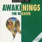 Awakenings by Tim Wheater
