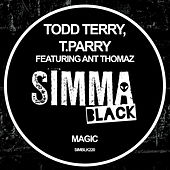 Magic de Todd Terry