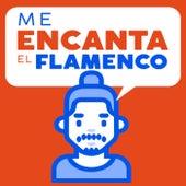 Me Encanta el Flamenco di Various Artists