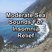 Moderate Sea Sounds For Insomnia Relief de Soothing Sounds