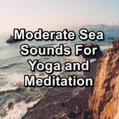 Moderate Sea Sounds For Yoga and Meditation de Deep Sleep Meditation