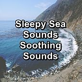 Sleepy Sea Sounds Soothing Sounds von The Relaxation