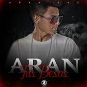 Tus Besos by Aran One