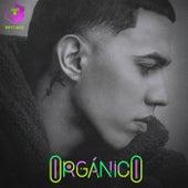 Orgánico de Brytiago