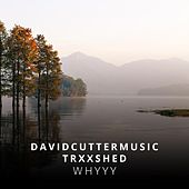 Whyyy by David Cutter Music