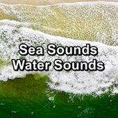Sea Sounds Water Sounds de Ocean Sounds Collection (1)