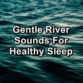 Gentle River Sounds For Healthy Sleep by S.P.A