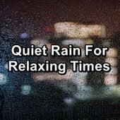 Quiet Rain For Relaxing Times de Deep Sleep Meditation