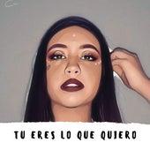 Tu Eres Lo Que Quiero by Nataly Martínez r