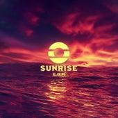 Sunrise EDM de Various Artists