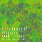 Hypercolour (Patrice Bäumel Remix) by CamelPhat