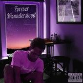 Forever Misundertsood by Troppi3