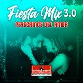 Fiesta Mix Peregrinos del Amor von Peregrinos del Amor