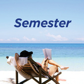 Semester by Various Artists