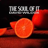The Soul of It de David Wilcox