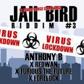 Jailbird Riddim #3 by Anthony B