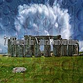 71 Thought in Natural Surroundings by Classical Study Music (1)