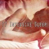 77 Intensive Sle - EP de Calming Sounds