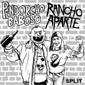Split con Pendorcho Baboso by Rancho Aparte