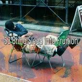 53 Bring Sleep into Fruition by Deep Sleep Relaxation